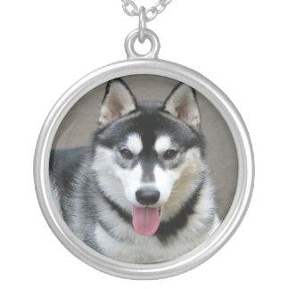 Alaskan Malamute Dog Photograph Silver Plated Necklace