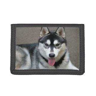 Alaskan Malamute Dog Photograph Tri-fold Wallet