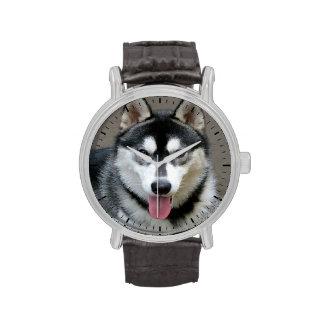 Alaskan Malamute Dog Photograph Wrist Watches