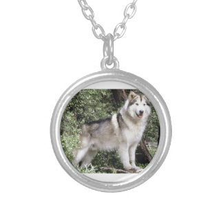 Alaskan Malamute Dog Silver Plated Necklace