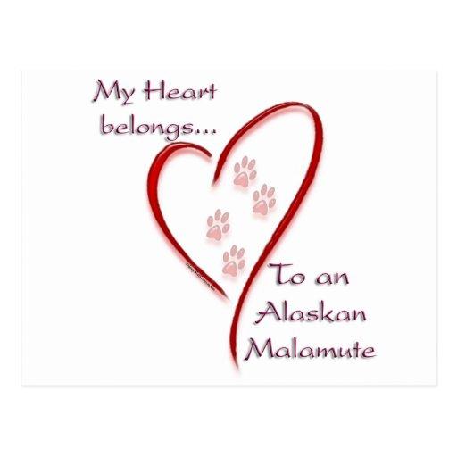 Alaskan Malamute Heart Belongs Postcards