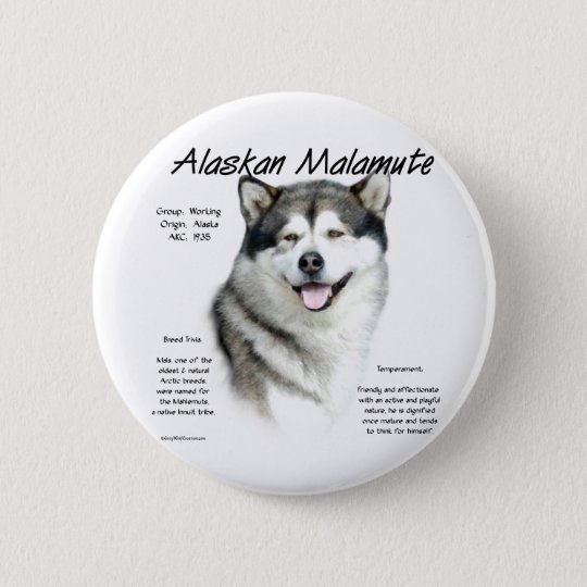 Alaskan Malamute History Design Button