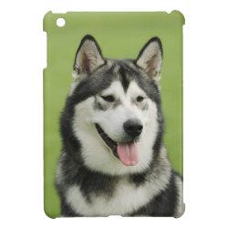 Case Savvy iPad Mini Glossy Finish Case with Siberian Husky Phone Cases design