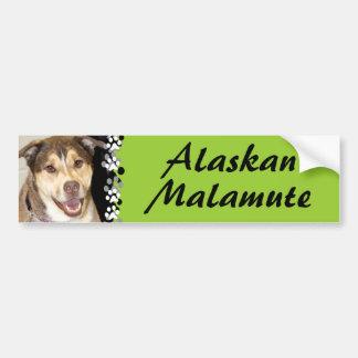Alaskan Malamute Mix Photo Car Bumper Sticker