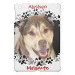 Alaskan Malamute Mix Photo iPad Mini Cover