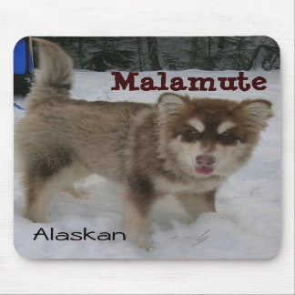 Alaskan Malamute Mouse Pad
