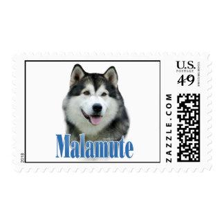 Alaskan Malamute Name Stamp