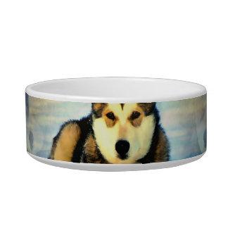 Alaskan Malamute Puppies Pet Bowl Cat Bowl