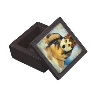 Alaskan Malamute Puppies Small Gift Box Premium Jewelry Box