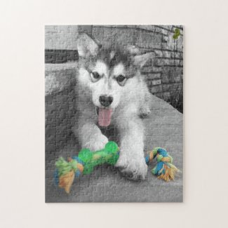 Alaskan Malamute Puppy Color Splash Photograph Jigsaw Puzzle