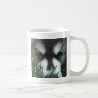 Alaskan Malamute Puppy Mug