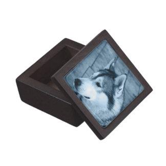 Alaskan Malamute Small Gift Box Premium Jewelry Boxes