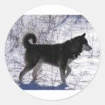 Alaskan Malamute Sticker