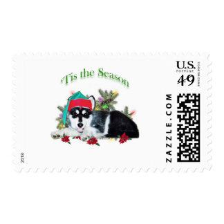 Alaskan Malamute 'Tis Stamps