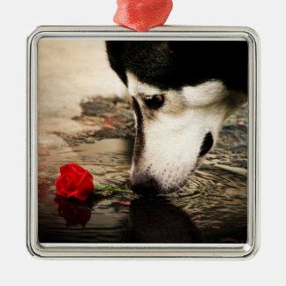 Alaskan Malamute with Red Rose Premium Ornament