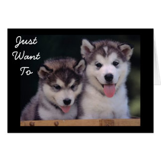"""ALASKAN MALAMUTES BIRTHDAY WISHES"" CARD"