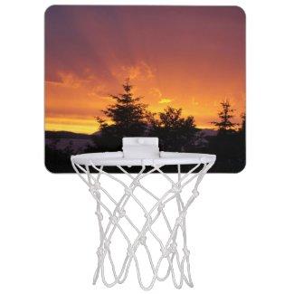 Alaskan mini basketball hoop