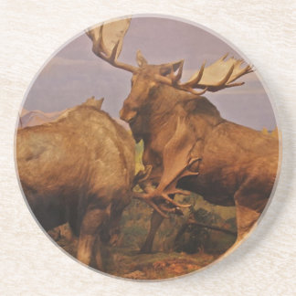 Alaskan Moose Coaster