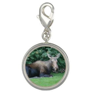 Alaskan Moose Photo Charm