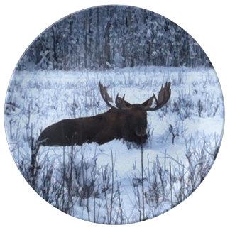 Alaskan Moose Plate