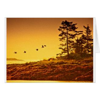 Alaskan Morning Greeting Card