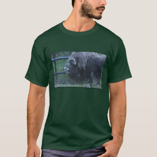 Alaskan Muskoxen Men's T-Shirt