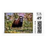 Alaskan Muskoxen Postage