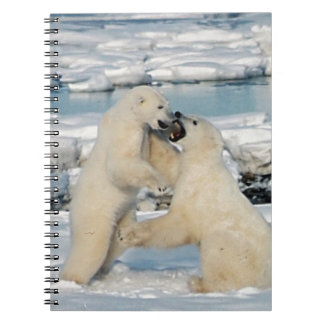 Alaskan Polar Bears Note Books
