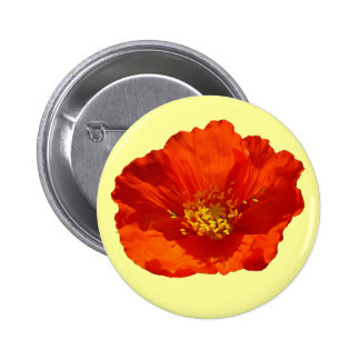 Alaskan Red Poppy Colorful Flower Button