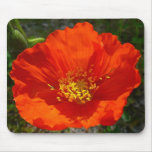 Alaskan Red Poppy Colorful Flower Mouse Pad