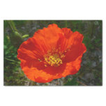 Alaskan Red Poppy Colorful Flower Tissue Paper