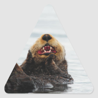 Alaskan Sea Otter Triangle Sticker