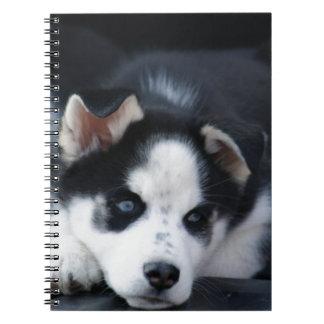 Alaskan Siberian Lop Eared Husky Sled Dog Puppy Spiral Note Books