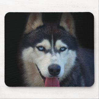 Alaskan sled dog - blue-eyed siberian husky mouse pad