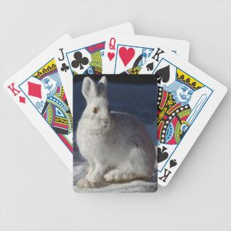 Alaskan Snowshoe Hare Card Deck