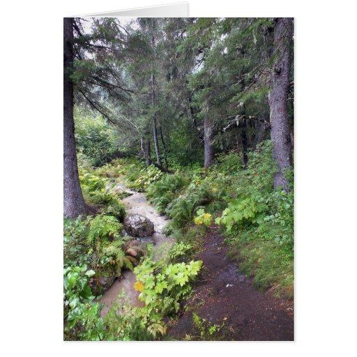Alaskan Stream Greeting Card