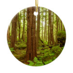 Alaskan Temperate Rainforest Ceramic Ornament