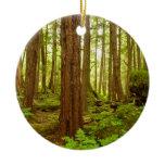 Alaskan Temperate Rainforest Ceramic Ornament