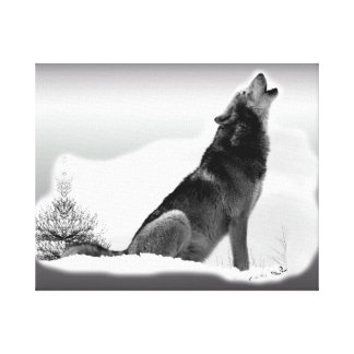 Alaskan Timber Wolf Wrapped Canvas