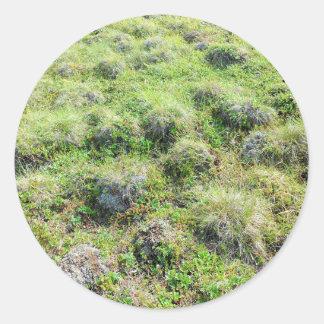 alaskan tundra round sticker