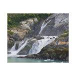 Alaskan Waterfall 002 Gallery Wrap Canvas