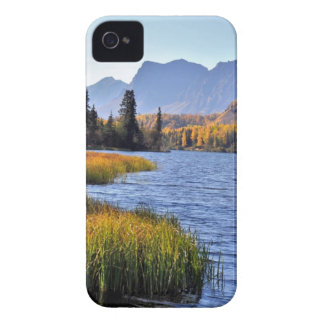 Alaskan Wilderness iPhone 4 Case-Mate Case