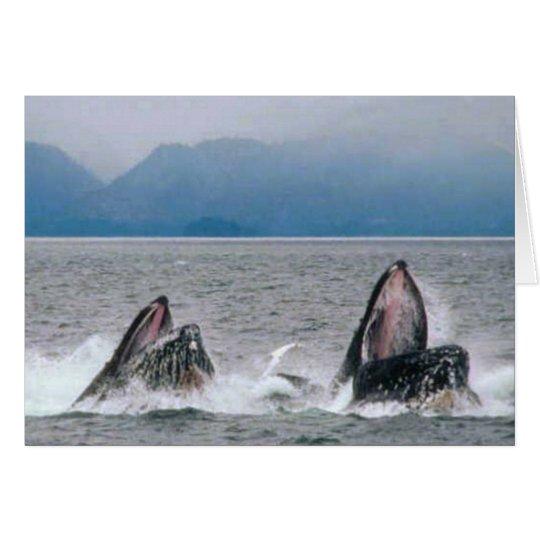 Alaskan Wildlife Card