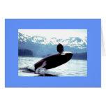 Alaskan Wildlife Cards