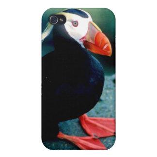 Alaskan Wildlife Cover For iPhone 4