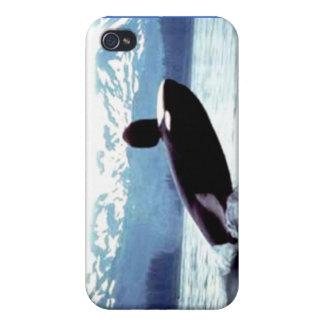 Alaskan Wildlife Covers For iPhone 4