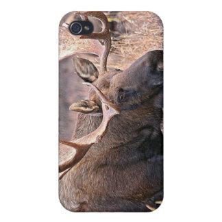 Alaskan Wildlife iPhone 4 Case