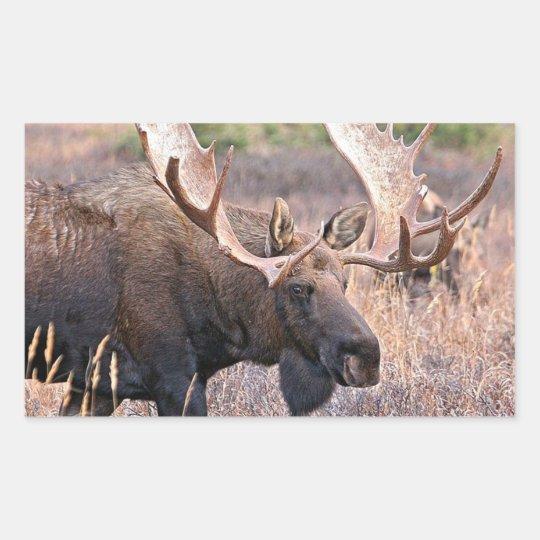 Alaskan Wildlife Rectangular Sticker