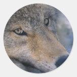 Alaskan Wildlife Round Sticker