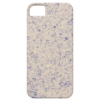 Alaskan Winter Dust iPhone SE/5/5s Case